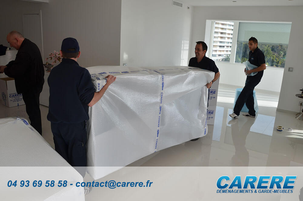carere-porteur-demenagements-professionnels